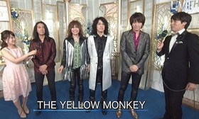 The_yellow_monkey