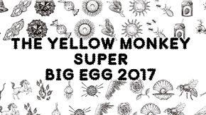 Bigegg2017b