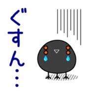 Hidebo